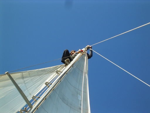 Francis on top of the mast, middle of Atlantic, Yacht Black Arrow, safesailing